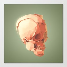 Skull Le Fort Canvas Print