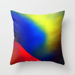 Aurore Boréale Throw Pillow