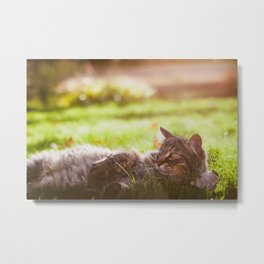 Love in the Sunshine Metal Print