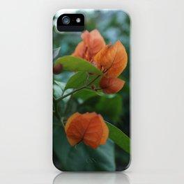 F L O R A iPhone Case