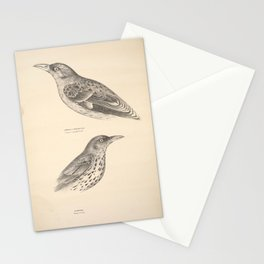 Vintage Print - Companion to Gould's Birds of Australia (1877) - Orioles: Crescent-Marked; Green Stationery Cards
