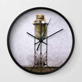 Potted Pommy Wall Clock