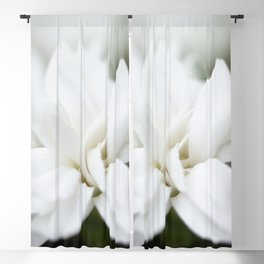 Snow White Flowers on a Dark Background #decor #society6 #buyart Blackout Curtain