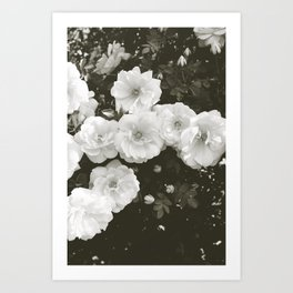 Floral in Black and White Art Print