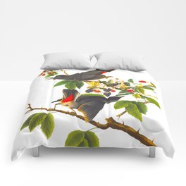 Catbird Vintage Illustration Comforters