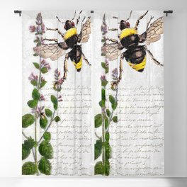 Cottage Style Thyme, Bumble Bee, Hummingbird, Herbal Botanical Illustration Blackout Curtain
