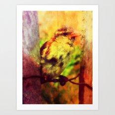 little bird. Art Print