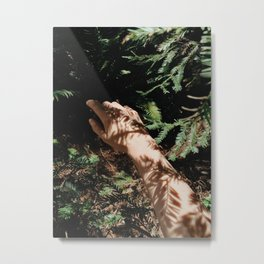 Nature Giving Metal Print