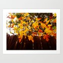 autumn by leaentz