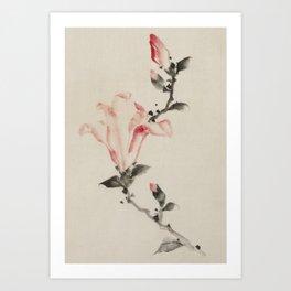 Large Pink Blossom Art Print
