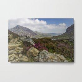 Mountain Walks Metal Print