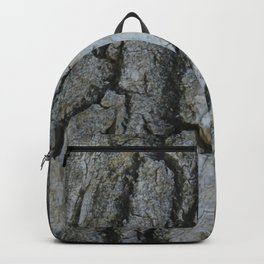 TEXTURES -- Fremont Cottonwood Bark Backpack