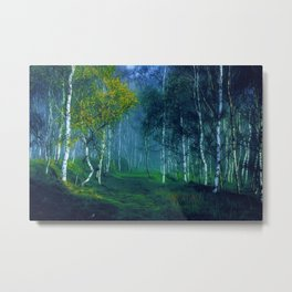 White Birch Forest, New England Landscape Metal Print