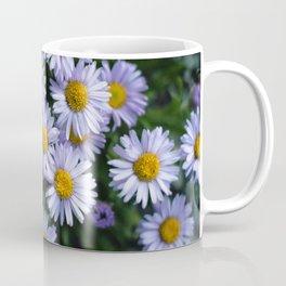 Plant Patterns - 𝘌𝘳𝘪𝘨𝘦𝘳𝘰𝘯 sp. Coffee Mug