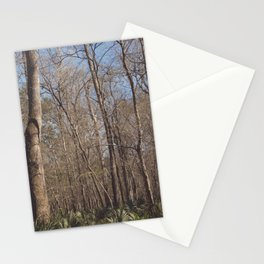 Florida Woods Stationery Cards