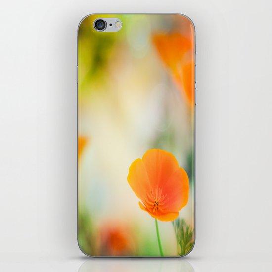 Poppy Rainbow iPhone & iPod Skin