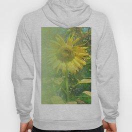 Radiant Sunflower Hoody