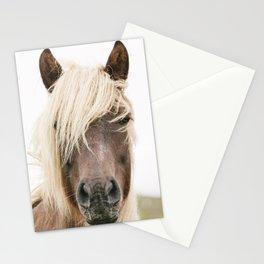 Horse V2 Stationery Cards