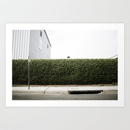 The Green Wall Art Print
