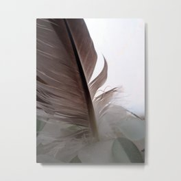 Feather and Sea Glass Metal Print