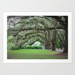 Southern Grace Art Print