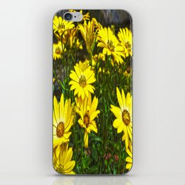 daisys flowers iPhone Skin
