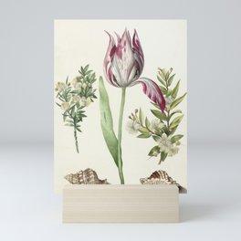 Maria Sibylla Merian Vintage Botanical Tulip and Myrtle Print Mini Art Print