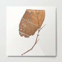 Leaf Theobroma subincanum Metal Print