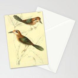 Tody Motmot hylomanes momotula8 Stationery Cards