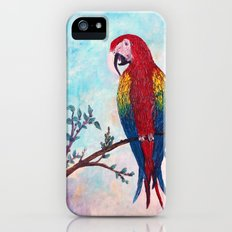 Polly Want A Cracker? iPhone (5, 5s) Slim Case