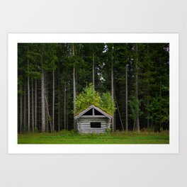 Trees On A Cabin (Norway) Art Print