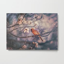 Northern Red Cardinal Spring Metal Print