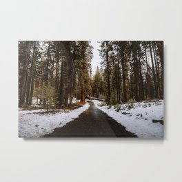 Tunnel Log Road in Sequoia II Metal Print