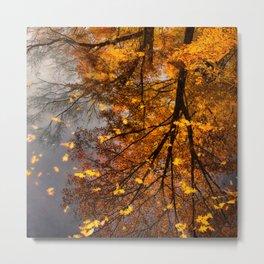 Fall Reflection Metal Print