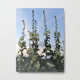 HOLLYHOCK SKY Metal Print
