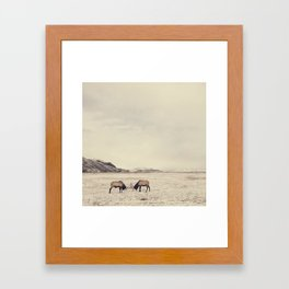 Sparring Elk in Wyoming - Wildlife Photography Framed Art Print