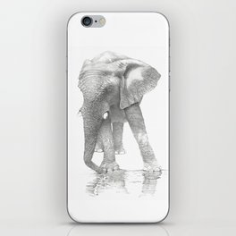 African Elephant, Loxodonta Africana iPhone Skin