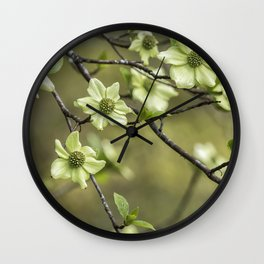 Green Kousa Dogwood Wall Clock