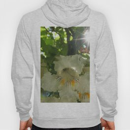 White flowers, with Orange and brown details and Sunburst (Post Tree Flower) Hoody
