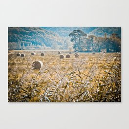 Hay Bales in Snowdonia Canvas Print