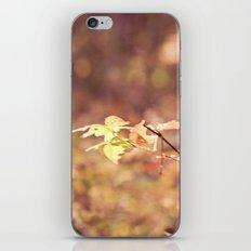 Autumn Child iPhone & iPod Skin
