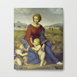 Madonna of the Meadows by Raphael Metal Print