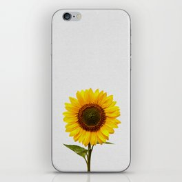 Sunflower Still Life iPhone Skin