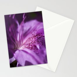 The beauty of the lilac Stationery Cards