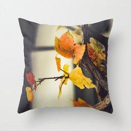 Autumn outdoors Throw Pillow