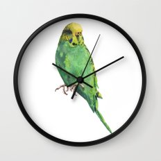 Budgie, parakeet, budgerigar,bird art, budgie painting Wall Clock