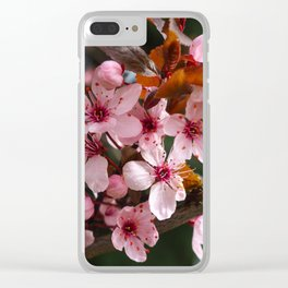 Pretty pink blossom Clear iPhone Case