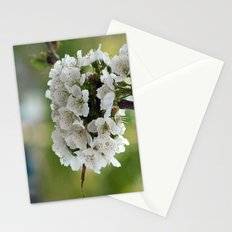 Cluster Fuhlowers. Stationery Cards