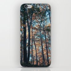 into the woods 09 iPhone & iPod Skin