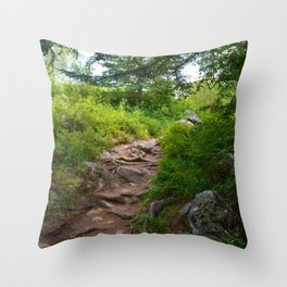 Valley of Five Lakes Trail in Jasper National Park, Canada Throw Pillow